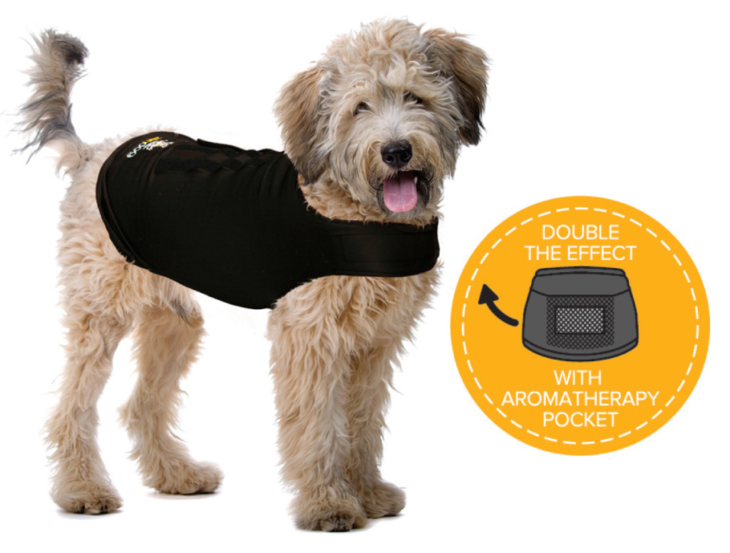Dog-with-pocket-image