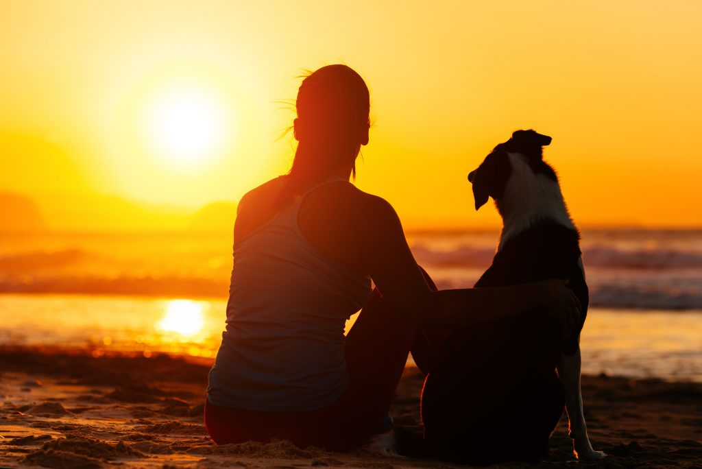 zenpet-woman-dog-sunset